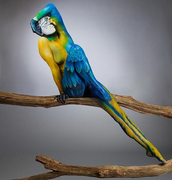 Parrot Body-Paintings