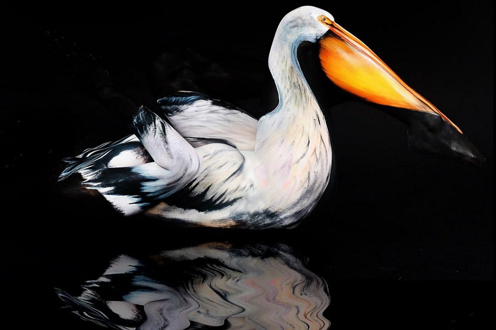 Pelican Body-Paintings
