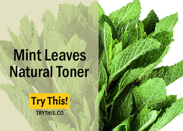 Mint Leaves Toner - Recommended for Oily Skin Type