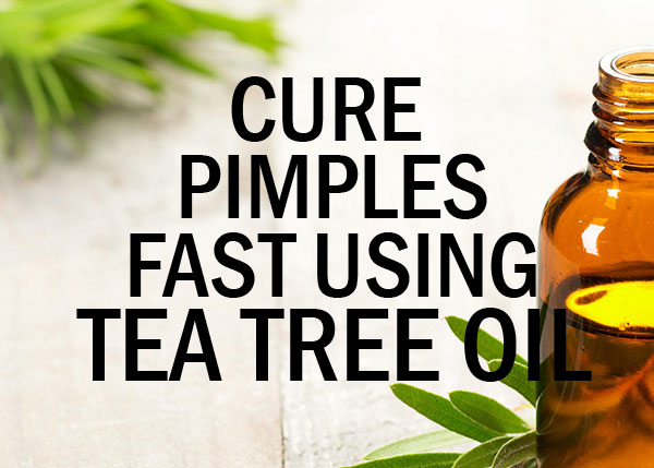 Tea Tree Oil as a Natural way to Cure Pimples Fast